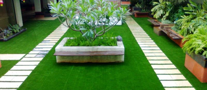 Cho thuê cỏ nhân tạo