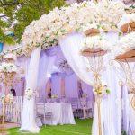 Các mẫu rạp cưới đẹp nhất